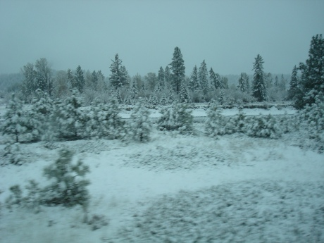 A little north of Kimberley, BC...